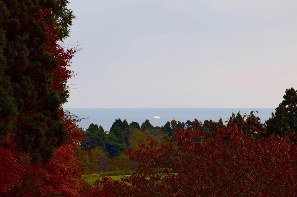 修道院の敷地から見える函館湾