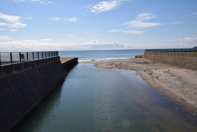 亀田川河口