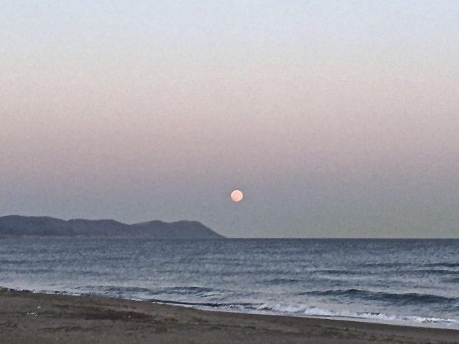 汐首岬のほうから月が昇ってきた