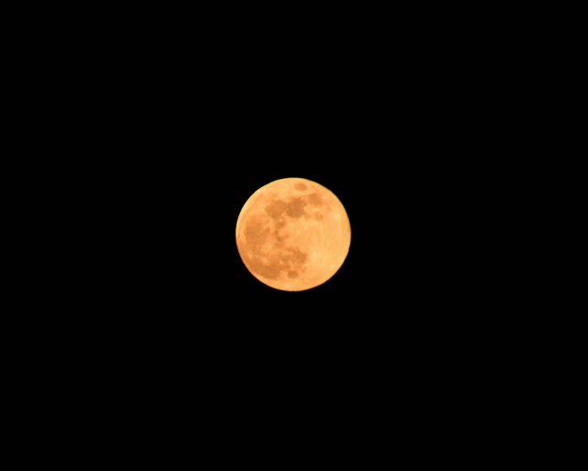ズームして撮ると赤みを帯びた月の表情がはっきりみえる