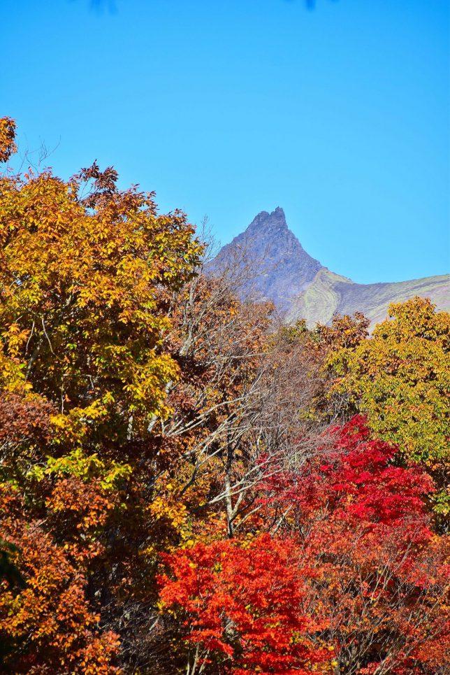 森林公園から空を突くように駒ヶ岳の頂きが見えた