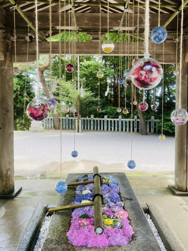 手水舎の手水鉢に切り花が散りばめられ、何やら透明な丸い鞠が上から吊り下がっていた