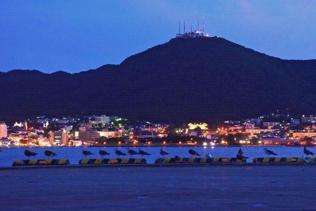 もう函館山麓の街の灯りが明るくなっていた。